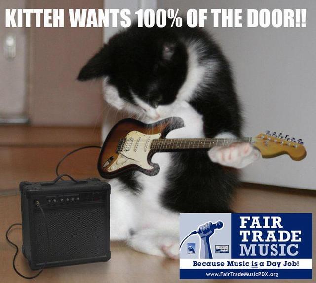FTM kitteh